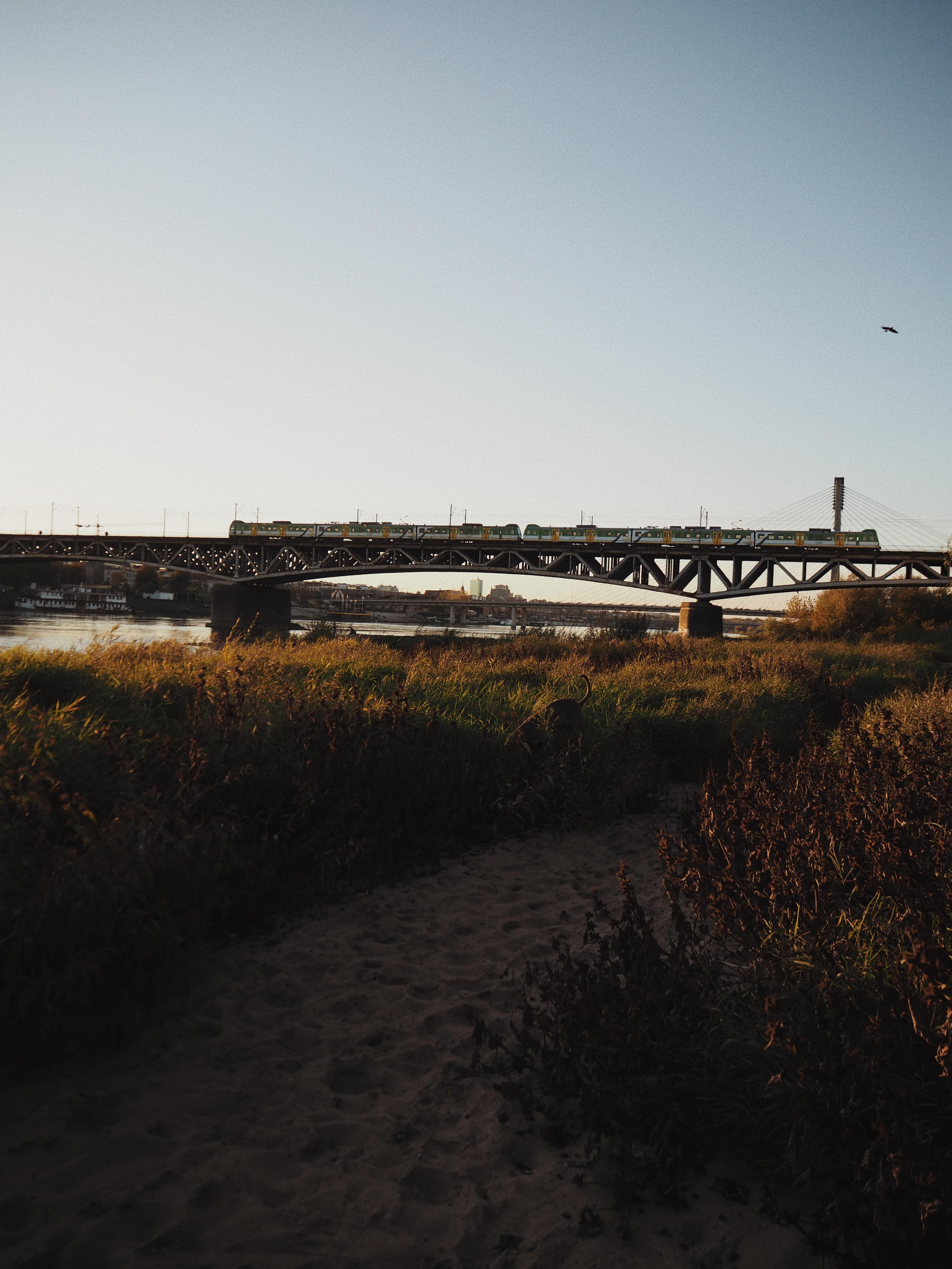 Brzeg Wisły