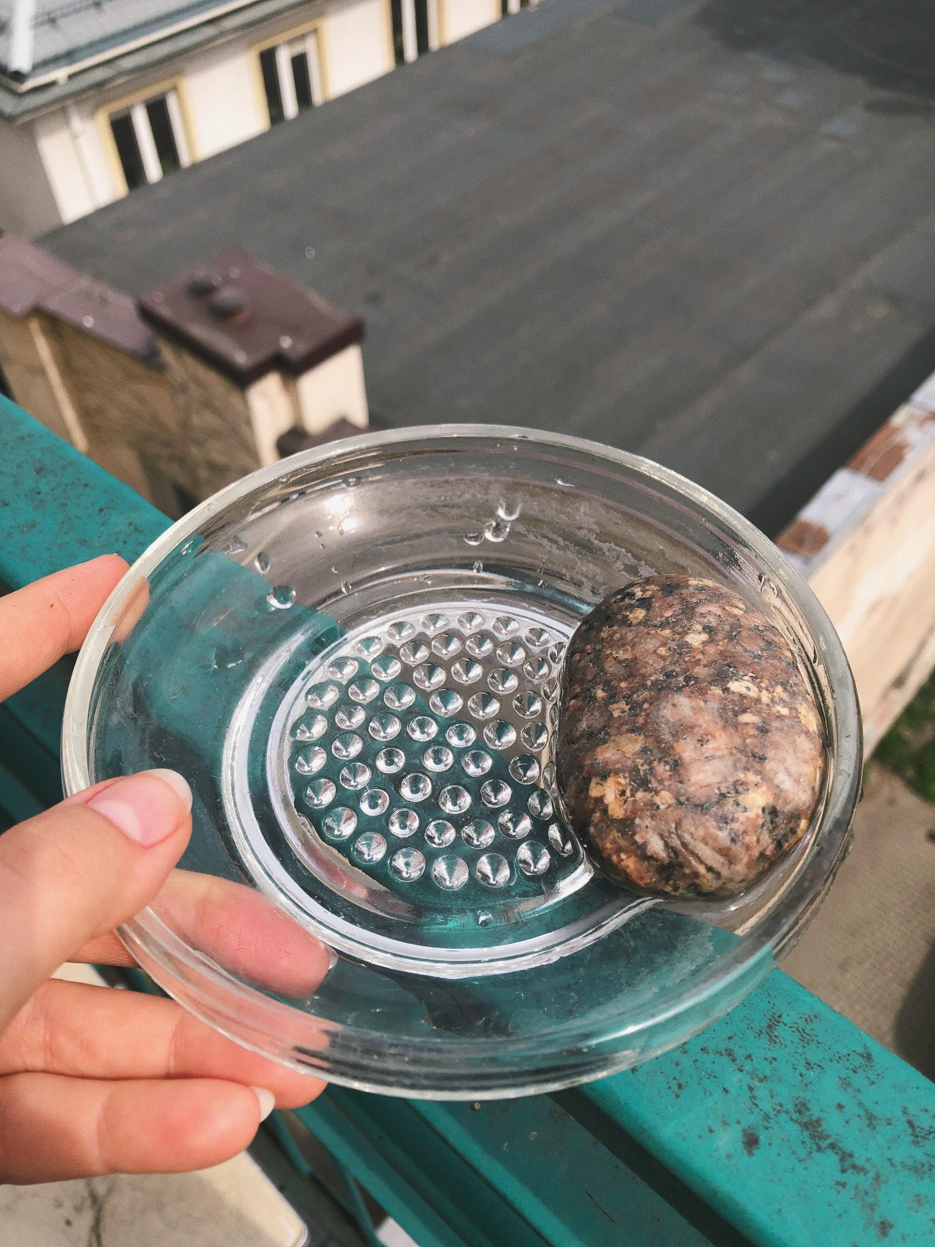 susza - poidełko dla owadów