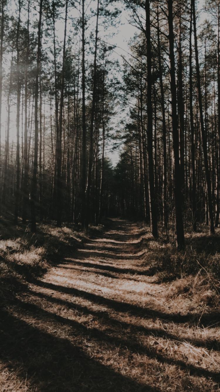 Kończę ten wpis z intencją, żebyśmy już niebawem mogły się spotkać. Najchętniej w lesie <3