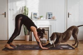 pies z głową w dół - dziewczyna i pies ćwiczą razem jogę