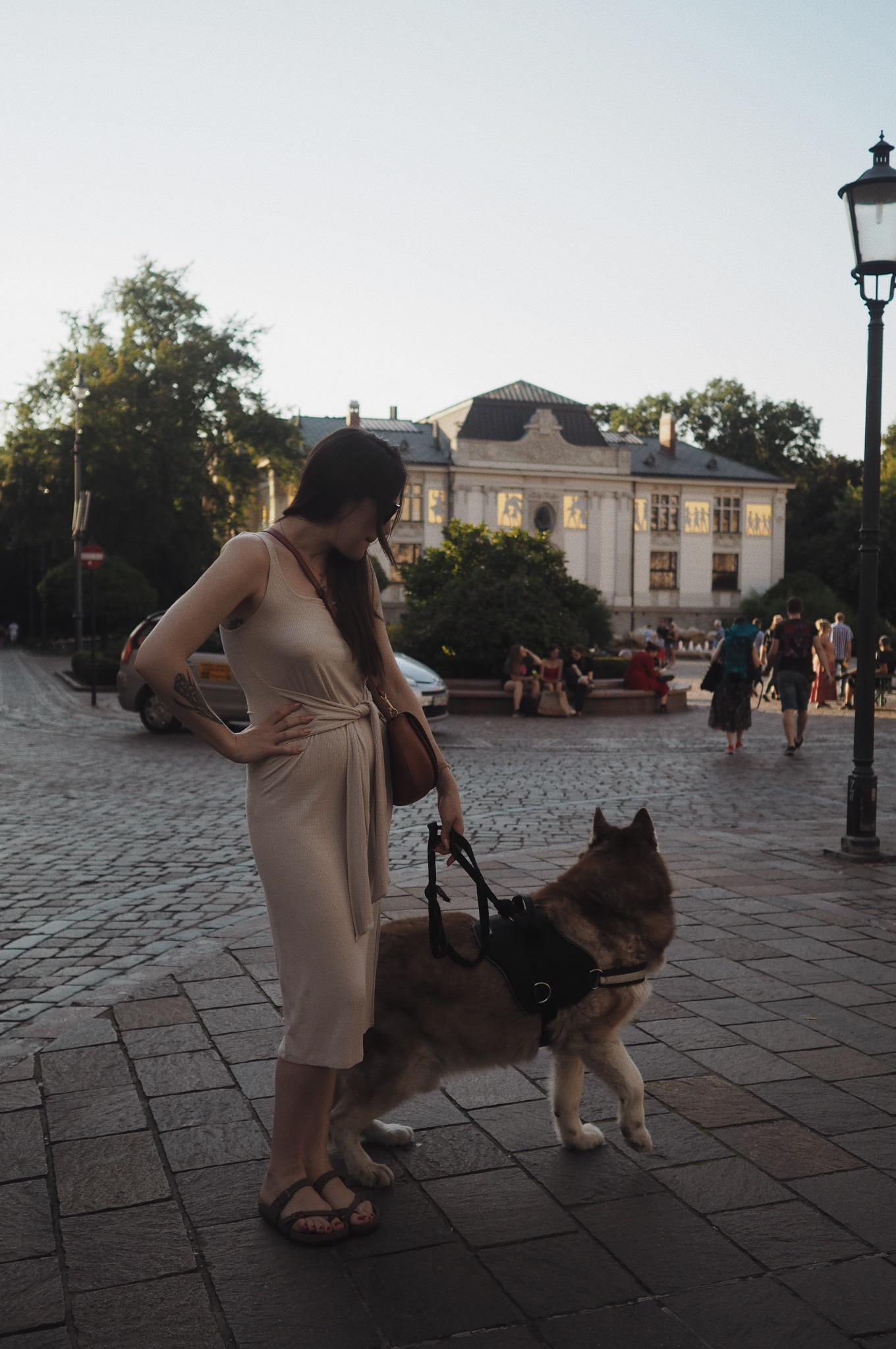 Gdzie zjeść w Krakowie lody